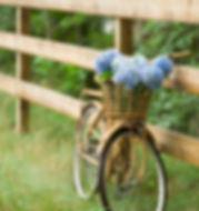 Countryside Bike Ride