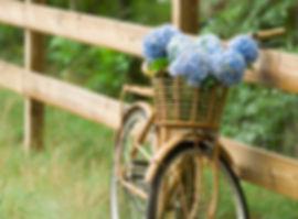 Fahrrad mi Blumen