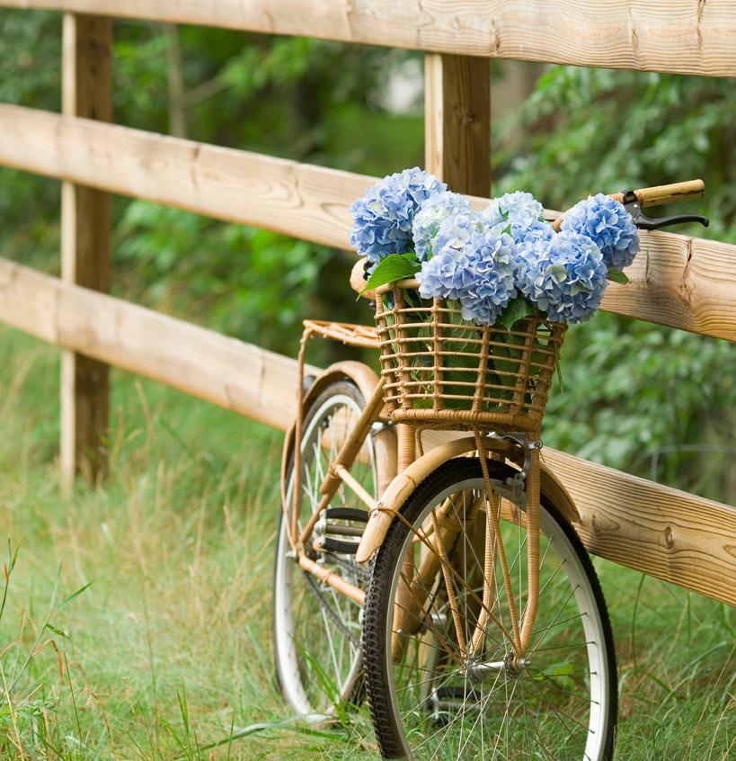 Campagne Bike Ride