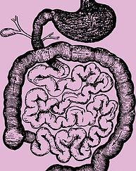 human-intestines_edited.jpg