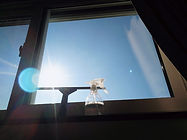 窓掃除.jpg