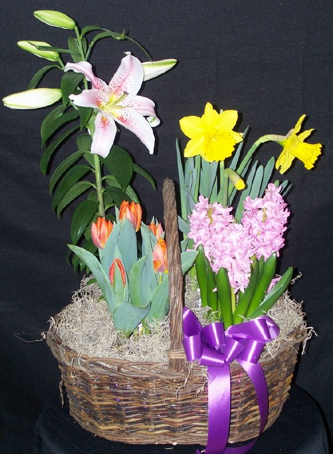 Sping Planter Basket