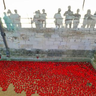 Blood Swept Lands, Tower of London, London, UK