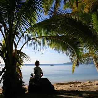 Naigani Island, Fiji