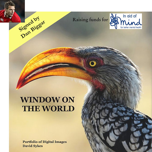 """Window on the World"" - Mind charity project, signed by Dan Biggar"