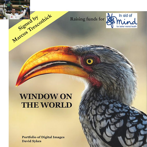 """Window on the World"" - Mind charity project, signed by Marcus Trescothick"