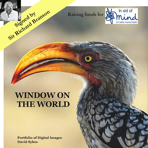 """""""Window on the World"""" - Mind charity project, signed by Sir Richard Branson"""