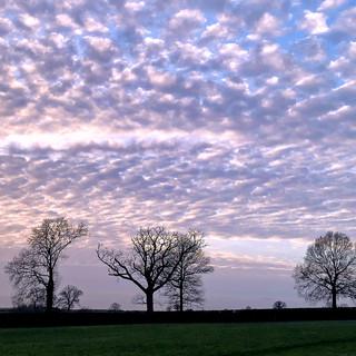 Shelswell Estate, Oxfordshire, UK
