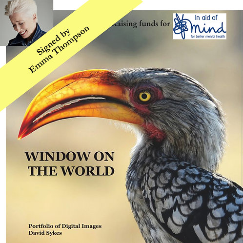 """""""Window on the World"""" - Mind charity project, signed by Dame Emma Thompson"""