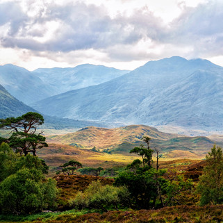 Glen Affric, Scottish Highlands, Scotland