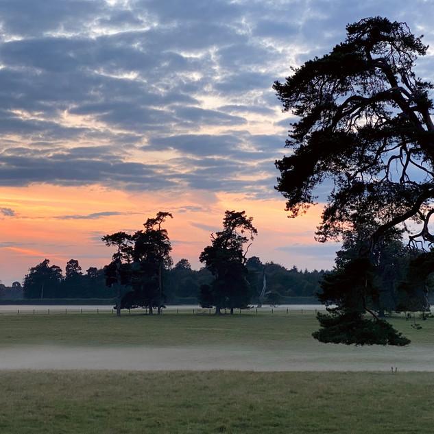 Shelswell Estate, Hethe, Oxfordshire