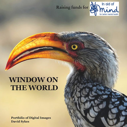 """""""Window on the World"""" - Mind charity project"""