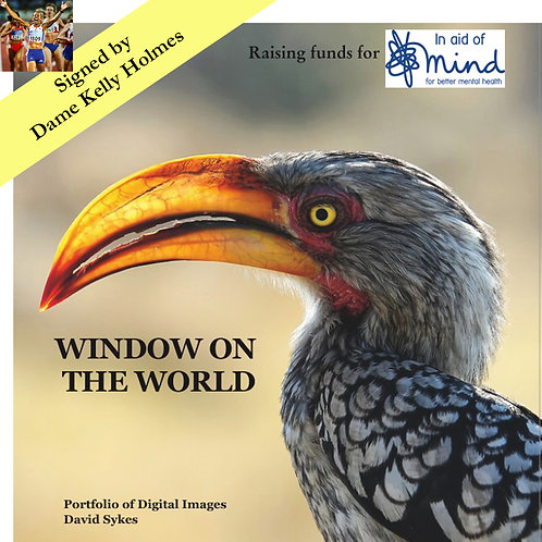 """Window on the World"" - Mind charity project, signed by Dame Kelly Holmes"