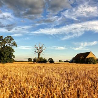 Hethe, Oxfordshire, UK