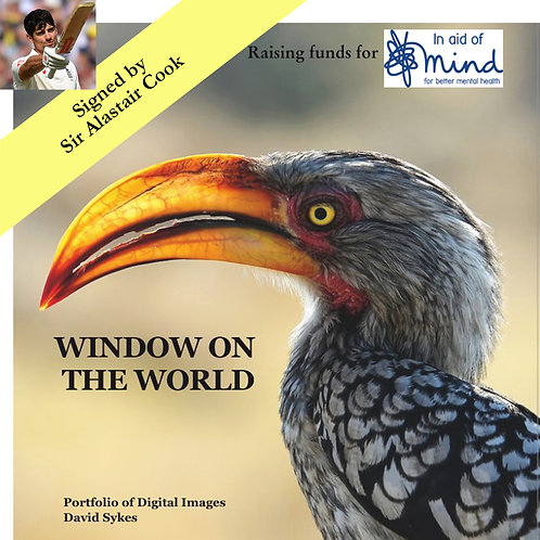"""""""Window on the World"""" - Mind charity project, signed by Sir Alastair Cook"""