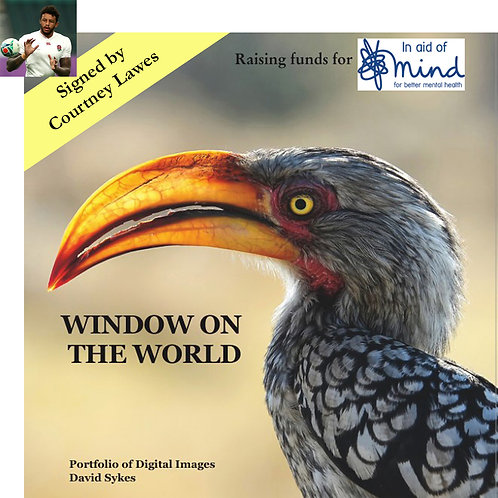 """Window on the World"" - Mind charity project, signed by Courtney Lawes"
