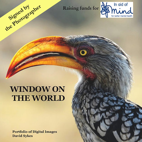 """Window on the World"" - Mind charity project, signed by the Photographer."