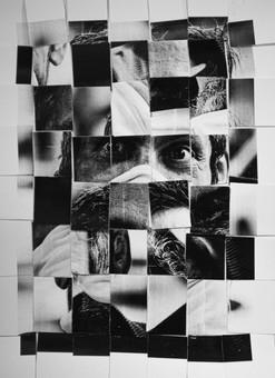 3 - Yuri Vandresen Pinto.jpg