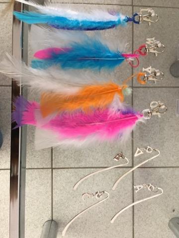 salon 1 signets-plumes