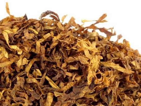 Bloedluis bestrijden met tabaksbladeren/Stengels