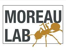 moreau logo.jpg