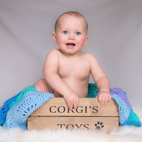 """Baby Dexter poses in his corgi brothers' wooden toy box captured by Aurélie """"Photobya4"""" Four in a studio"""