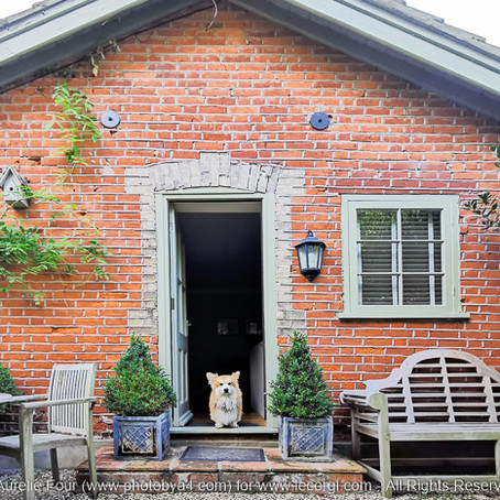 "Cottages.com: ""More Than Dog Friendly"""