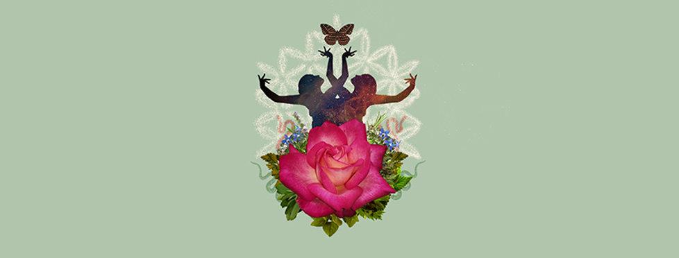 rose facebook dimension.jpg