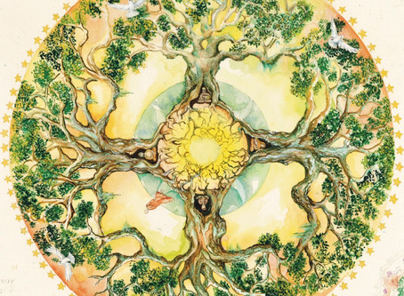 'MUSIC PLANTS TREES' New single release