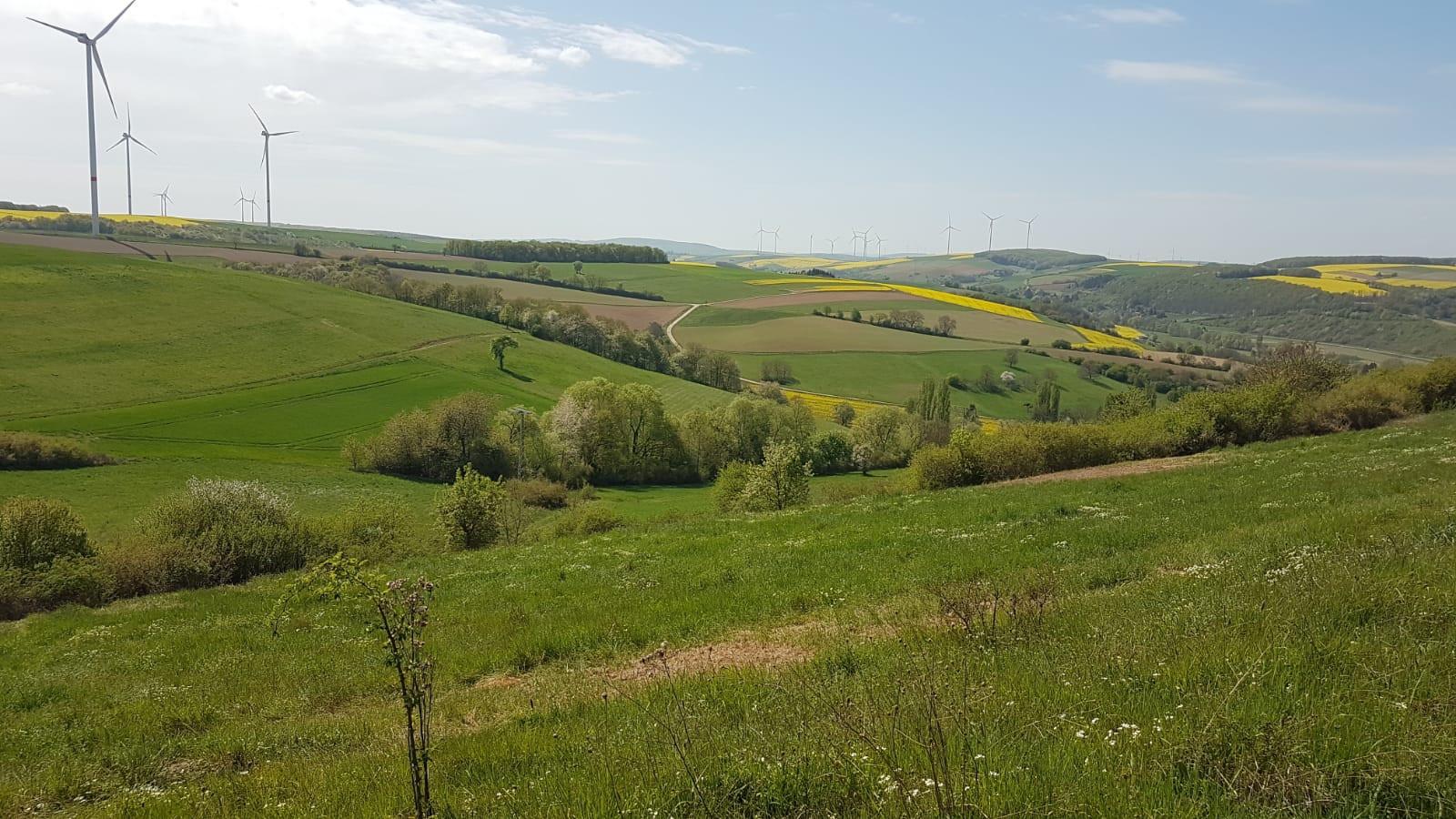Hügelland_1.jpg