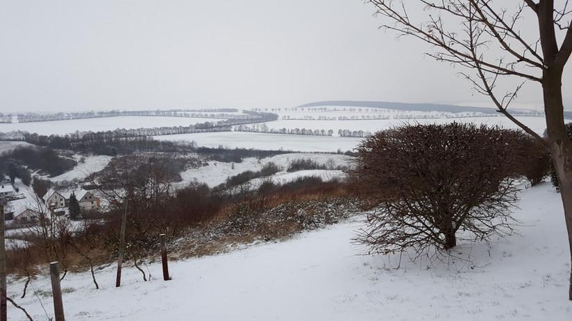 Rhh im Winter 2.jpg