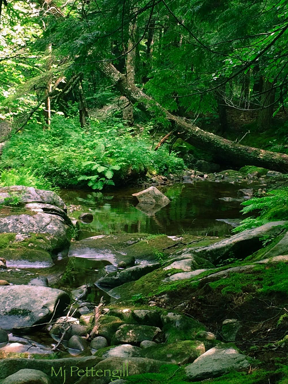 Cold River, NH - Mj Pettengill