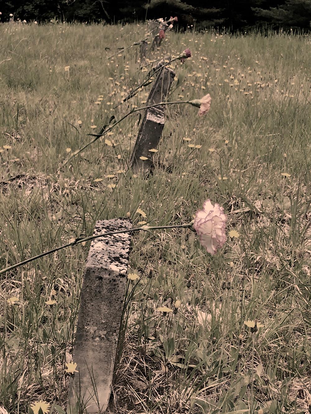 Carroll County Farm Cemetery, NH