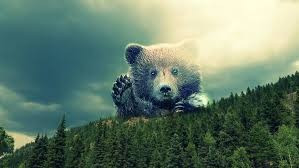 bear, surreal, woods, fantasy