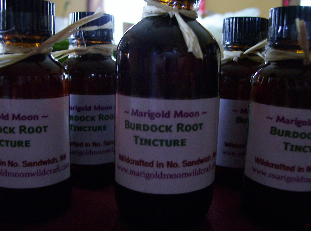Burdock Root Tincture, Marigold Moon Wildcraft Apothecary