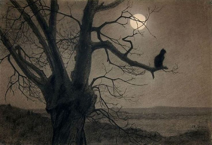Cat, Moonlight, Théophile Alexandre Steinlen