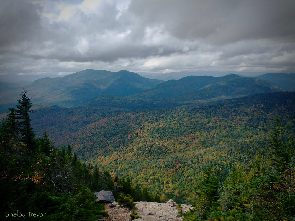 View From Mount Tripyramid, North, (NH) Shelby Trevor