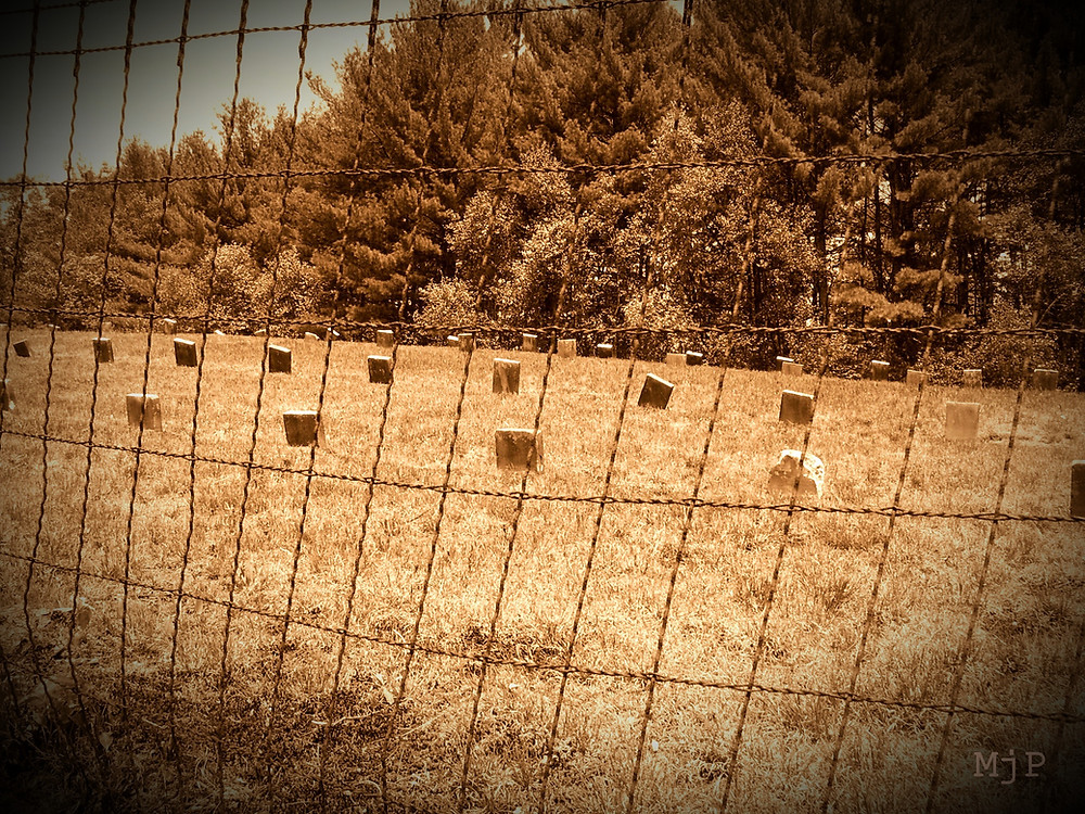 Carroll County Farm Cemetery (NH), Mj Pettengill