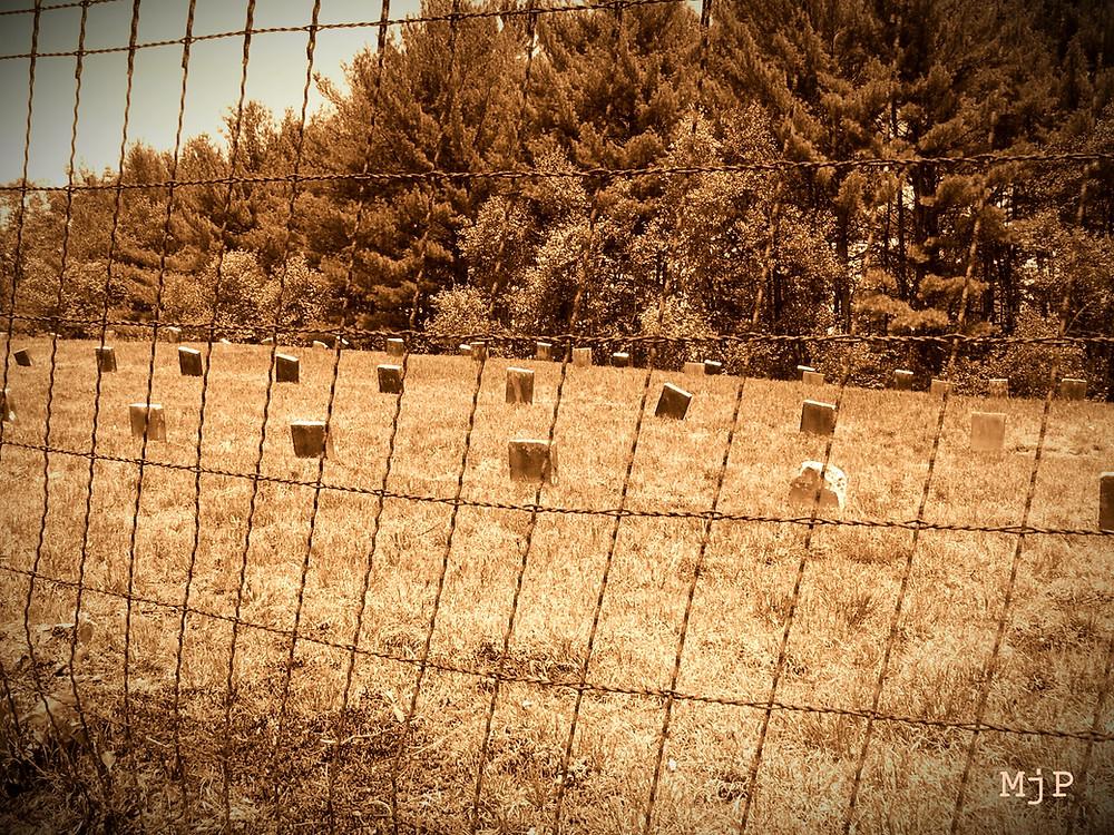 County Farm Cemetery, Mj Pettengill