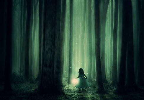 Trees, Twilight, Magic, Girl, CCO