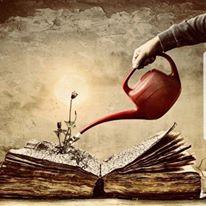 Surreal Book Image, CCO