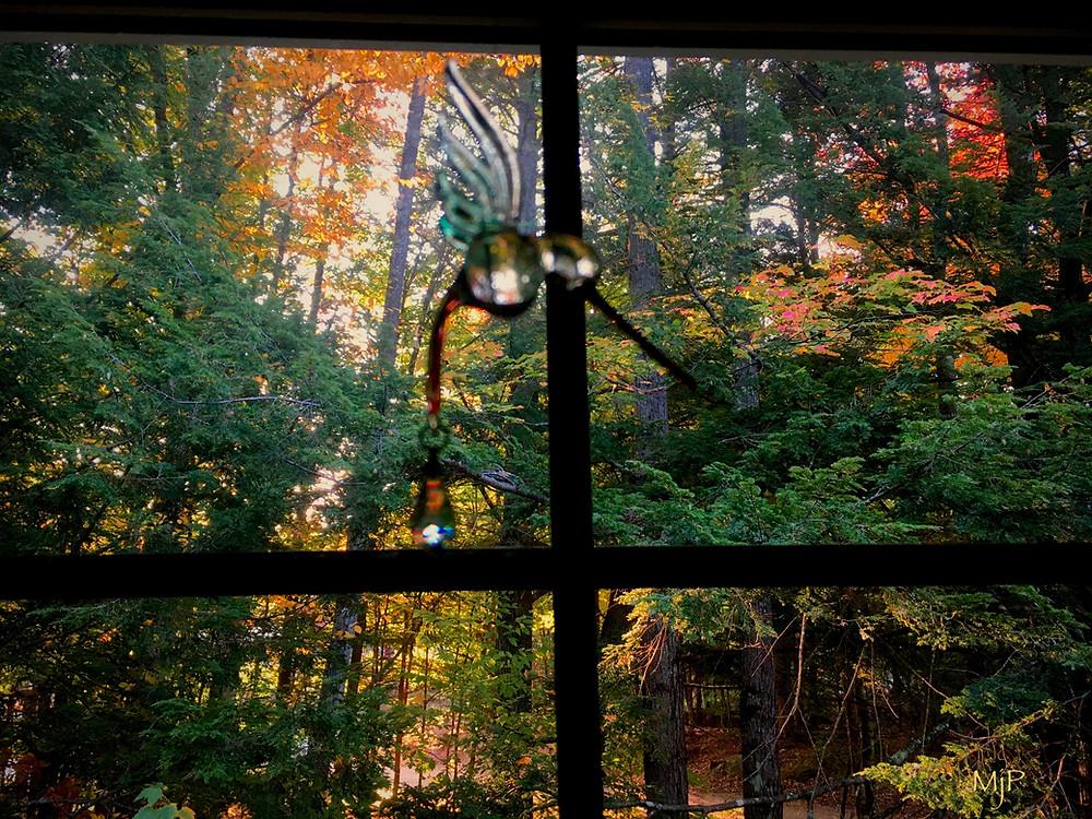 Autumn Window, Mj Pettengill