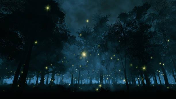Fireflies, iStock Photos