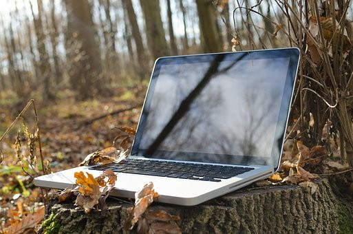 Laptop in the Woods, CC0