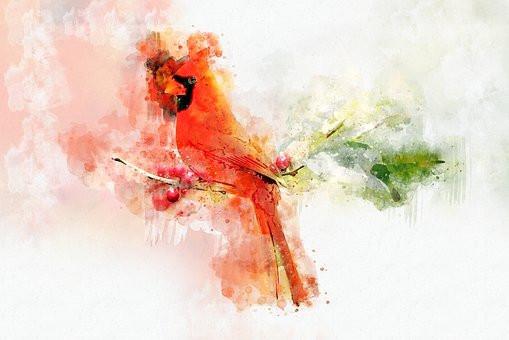 Abstract Cardinal. CC0