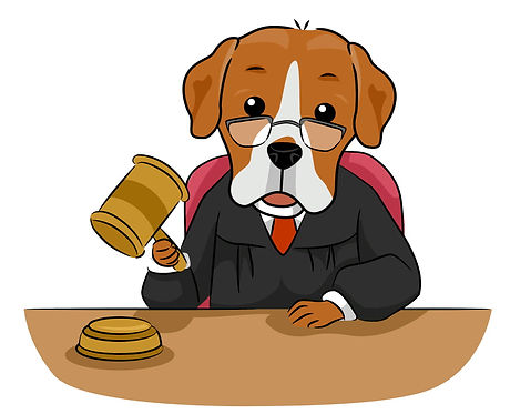 dog defense attorney
