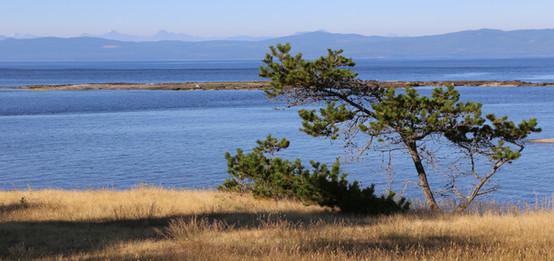 Hornby Island, BC, Canada