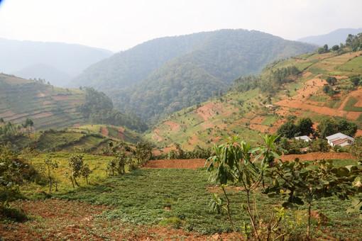 Ugandan Countryside