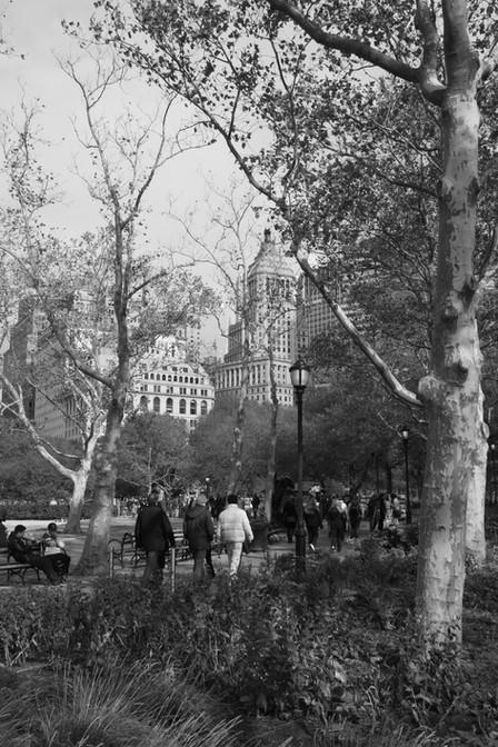 Central Park, Battery Park, Empire State Building, New York City, USA