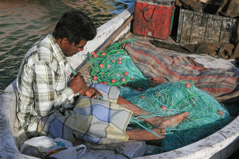 Fisherman, Al Khor Harbour, Qatar